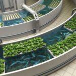 Аквапоника - на стыке теплиц и аквариума