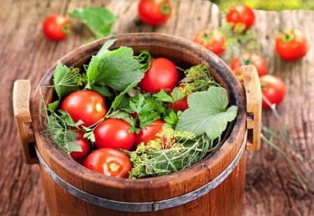 заготовки из тепличных овощей - засолка