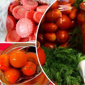 заготовки из помидор выращенных в теплице - обложка статьи
