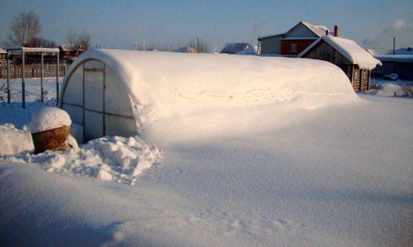 снеговая нагрузка заключение